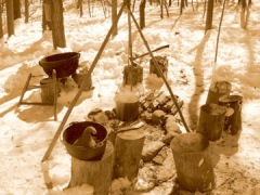Recreation of a settler's maple boiling camp