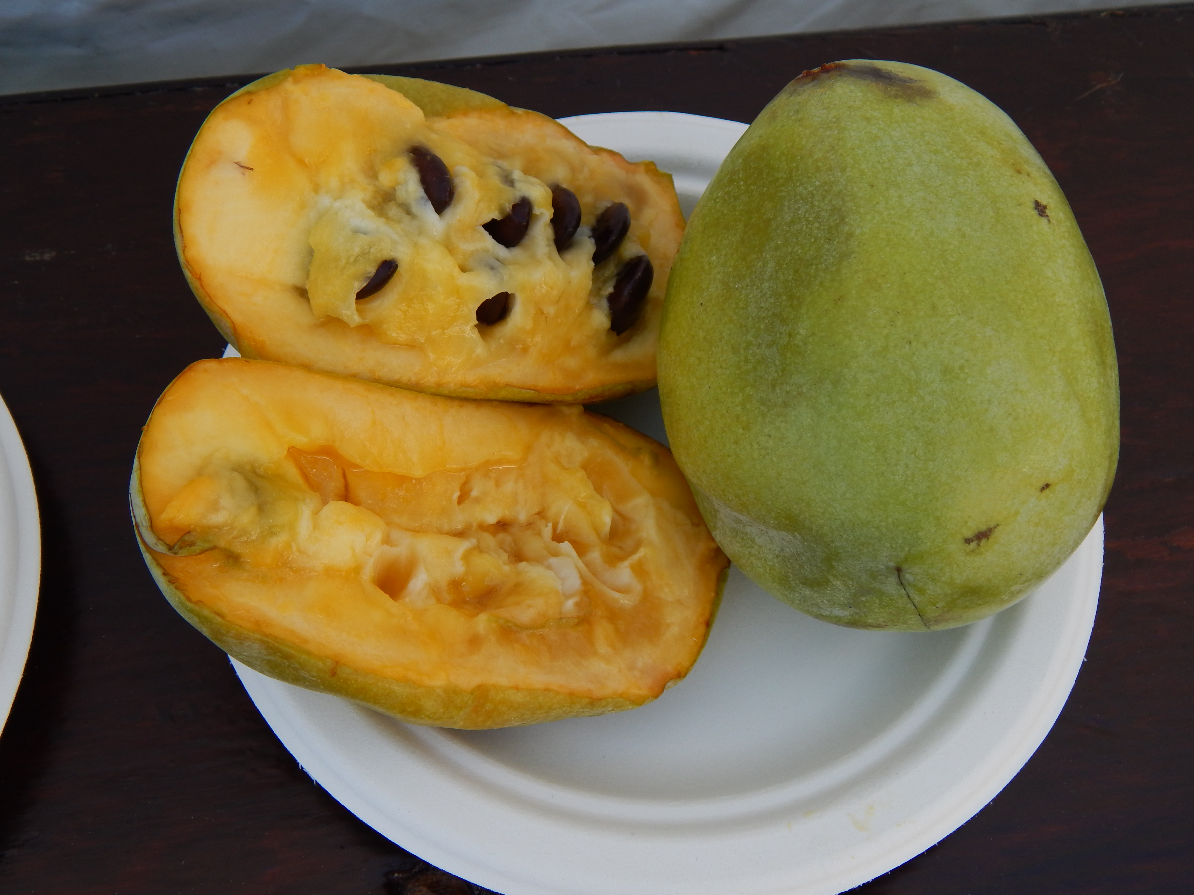 On seasonal cycles, paw paws, and one year of Farming the